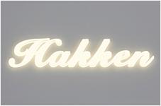 LEDサイン:LED象嵌サイン 看板 板金 文字